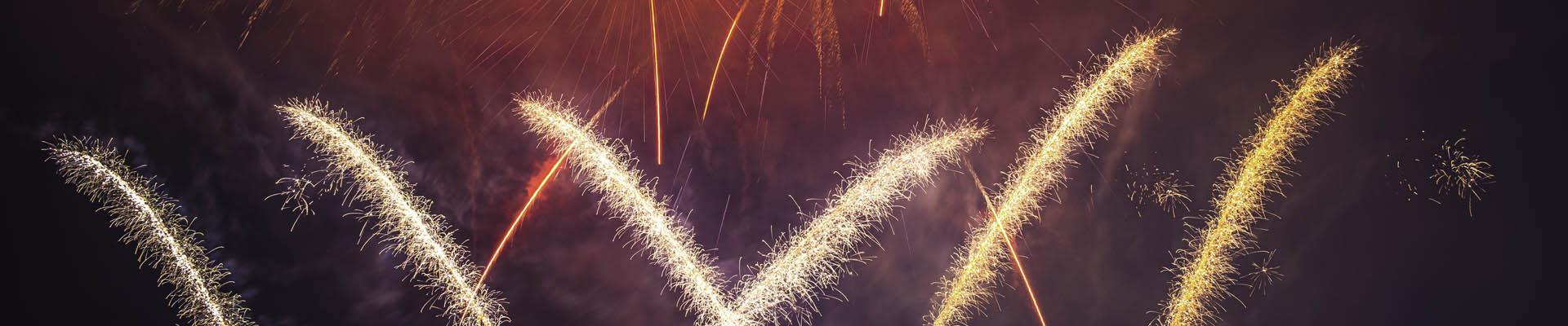 focuri de artificii profesionale